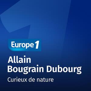 Curieux de nature   Allain Bougrain...