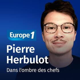 Dans l'ombre des chefs   Pierre Herbulot