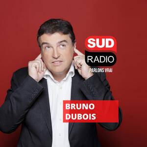 La sélection musique de Bruno Dubois